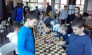 Festival šaha 2017